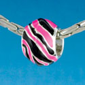 B1671 tlf - Wide Hot Pink Zebra Print Band - Silver Plated Large Hole Bead