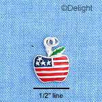 C1192 - Apple - Usa - Silver Charm Mini