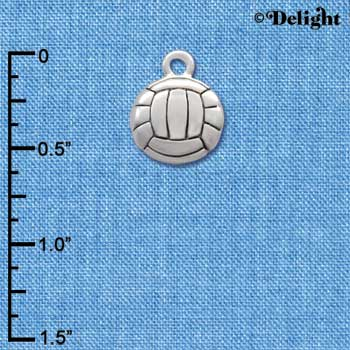 C2893+ - Silver Volleyball - 2 Sided - Silver Charm