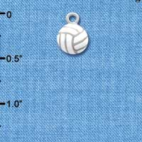 C1312 - Volleyball - - Silver Charm Mini