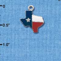 C1461 - Texas - Fancy Edging - Silver Charm