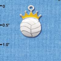 C1970 - Volleyball - Crown - Silver Charm