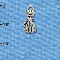 C3773 tlf - 2-D Striped Cat - Silver Charm