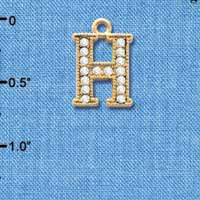C3843 tlf - Swarovski Crystal - H - Beaded Border - Gold Charm