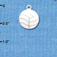 C1069 - Volleyball - Silver Charm